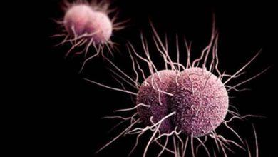 بیماری های قابل انتقال از مقعد