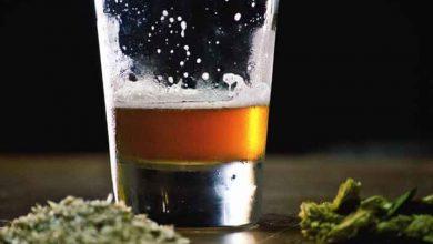 مصرف همزمان الکل و حشیش